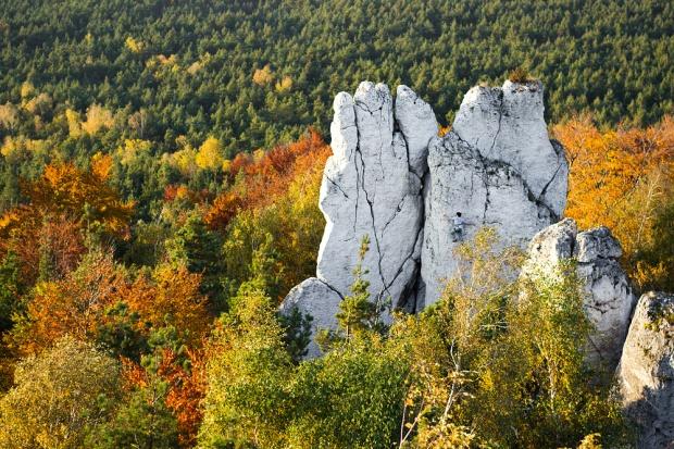 2013 rok, Góra Zborów – czasem warto też być w odpowiednim miejscu i czasie